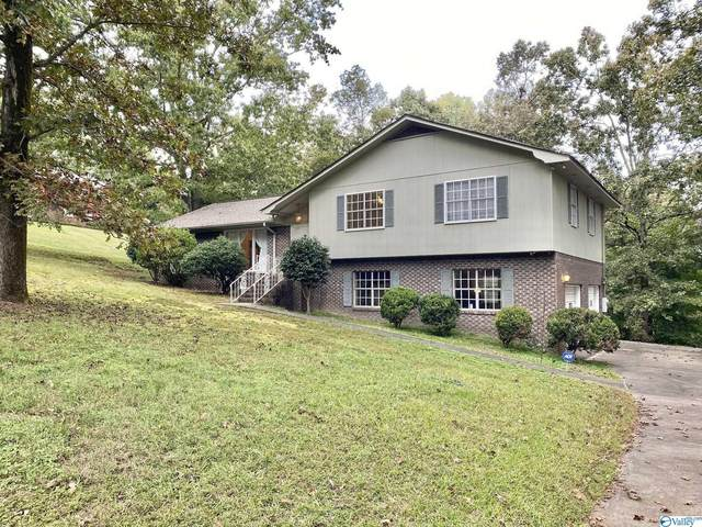 416 Le An Street, Glencoe, AL 35905 (MLS #1792773) :: Coldwell Banker of the Valley