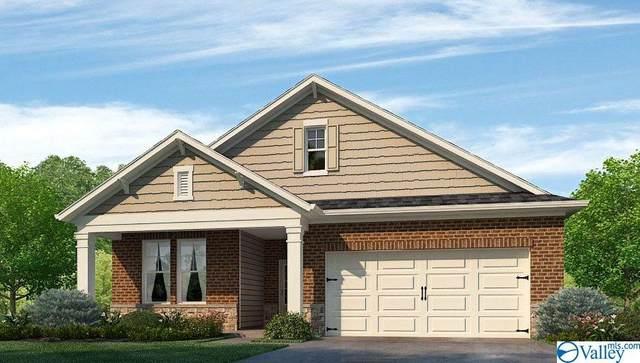 311 Jackson Point Circle, Huntsville, AL 35811 (MLS #1792795) :: Green Real Estate