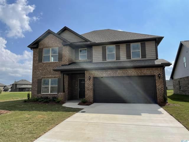 254 Holt Street, Meridianville, AL 35759 (MLS #1793078) :: Green Real Estate