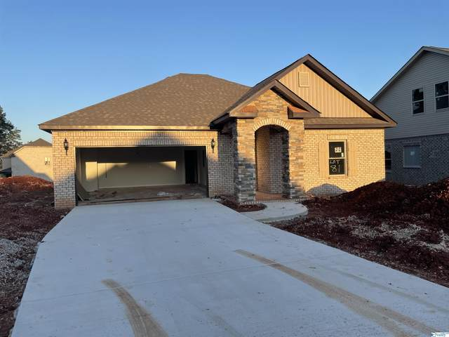243 Portrait Street, Meridianville, AL 35759 (MLS #1793080) :: Green Real Estate