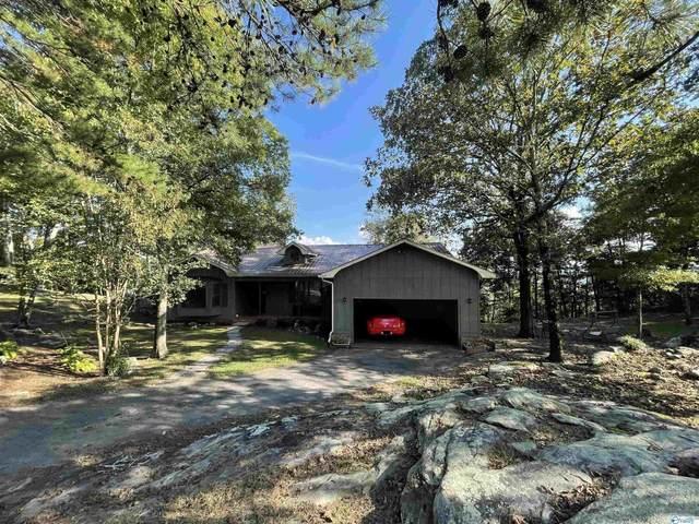994 Mountain View Avenue, Sand Rock, AL 35983 (MLS #1793206) :: Green Real Estate