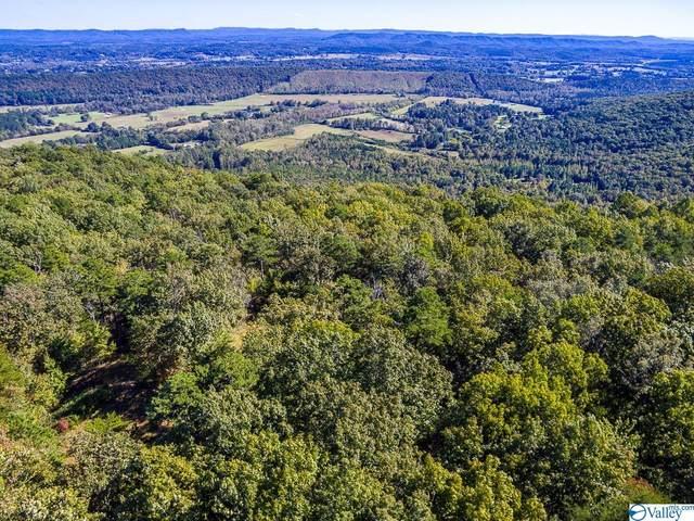 00000 County Road 844, Mentone, AL 35984 (MLS #1793589) :: MarMac Real Estate