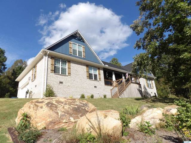83 Buckskin Drive, Guntersville, AL 35976 (MLS #1793694) :: Green Real Estate