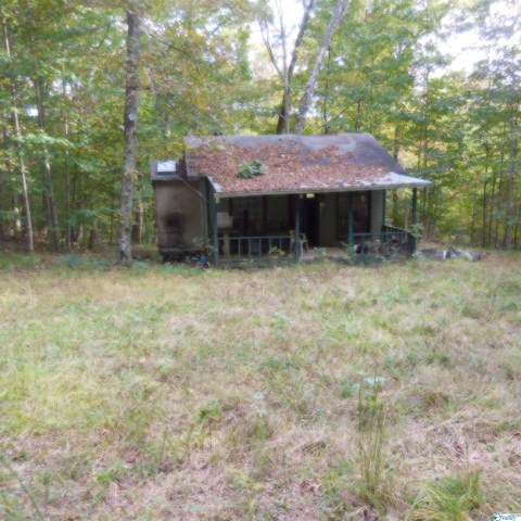 0 County Road 401, Paint Rock, AL 35764 (MLS #1793795) :: Green Real Estate