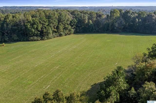 2075 County Road 1371, Vinemont, AL 35179 (MLS #1793821) :: Green Real Estate