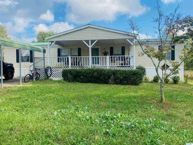 1260 Old Horton Road, Albertville, AL 35950 (MLS #1793999) :: Green Real Estate