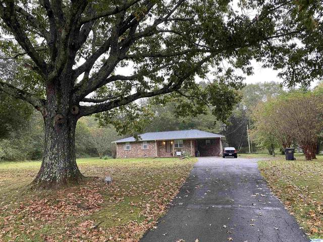 3570 SW Old Moulton Road, Decatur, AL 35603 (MLS #1794007) :: Legend Realty