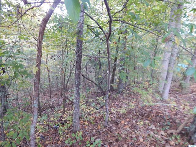 Ridge Circle, Scottsboro, AL 35769 (MLS #1794036) :: LocAL Realty