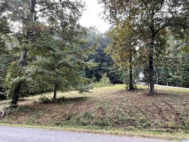 1311 Sibert Drive, Glencoe, AL 35905 (MLS #1794111) :: Green Real Estate