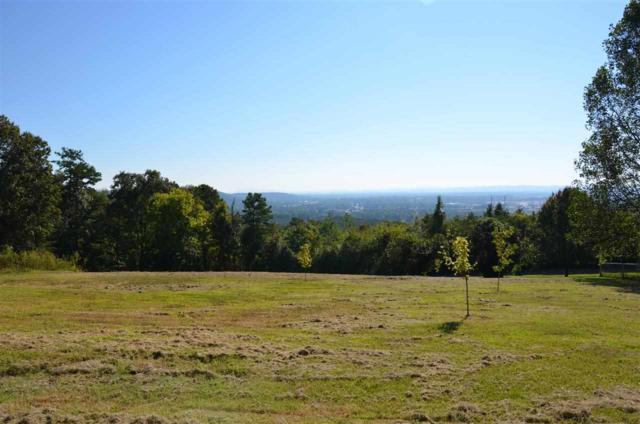 1011 Scenic Drive, Gadsden, AL 35904 (MLS #1004069) :: RE/MAX Alliance