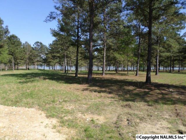 3 Summer Breeze Drive, Cedar Bluff, AL 35959 (MLS #1016526) :: RE/MAX Alliance