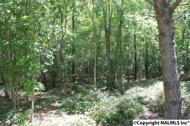 Lot 34 River Lane, Mentone, AL 35984 (MLS #1027934) :: RE/MAX Alliance