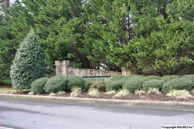 XX Lea Christine Circle, Arab, AL 35016 (MLS #1038214) :: Amanda Howard Real Estate™