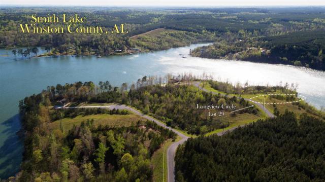 29 Longview Drive, Double Springs, AL 35553 (MLS #1038268) :: RE/MAX Alliance
