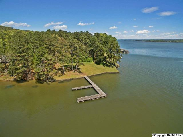 Hidden Drive, Scottsboro, AL 35769 (MLS #1038724) :: RE/MAX Alliance