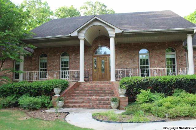 20278 Capitol Hill Drive, Tanner, AL 35671 (MLS #1043446) :: Intero Real Estate Services Huntsville