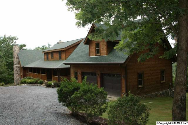 33533 Highway 157, Cloudland, GA 30731 (MLS #1046635) :: Amanda Howard Real Estate™
