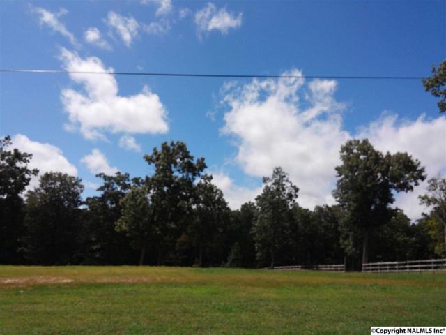 130 & 132 Hillsdale Drive, Gurley, AL 35748 (MLS #1051556) :: Amanda Howard Sotheby's International Realty