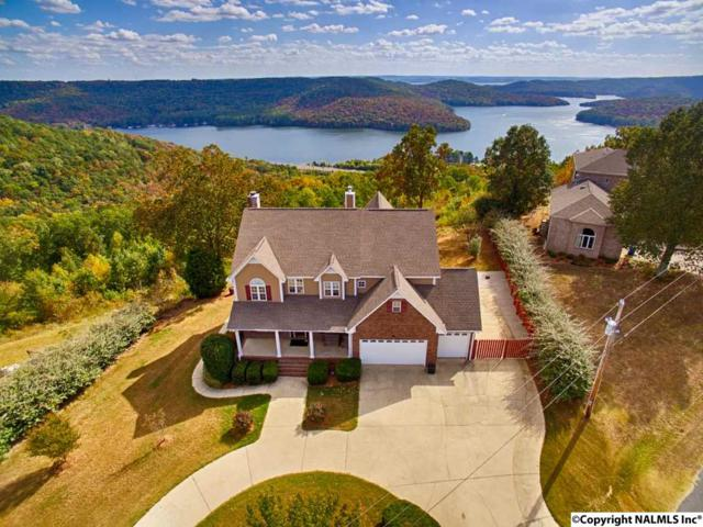 515 Joeffie Road, Grant, AL 35747 (MLS #1055528) :: Amanda Howard Sotheby's International Realty