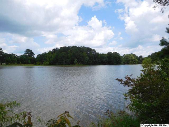 8 Lakeside Drive, Centre, AL 35960 (MLS #1056929) :: RE/MAX Alliance