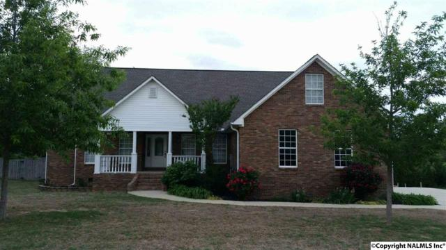 523 SW Chantels Way, Hartselle, AL 35640 (MLS #1063169) :: Legend Realty