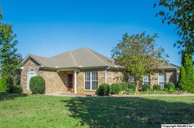 106 Turkey Ridge Drive, New Market, AL 35761 (MLS #1063860) :: Amanda Howard Real Estate™