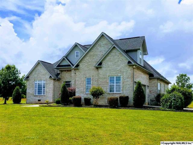 683 Beth Road, New Market, AL 35761 (MLS #1064186) :: Amanda Howard Real Estate™