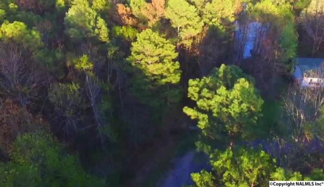 County Road 608, Cedar Bluff, AL 35960 (MLS #1066133) :: Amanda Howard Real Estate™