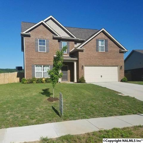 107 Silent Spring Court, Harvest, AL 35749 (MLS #1066942) :: Intero Real Estate Services Huntsville