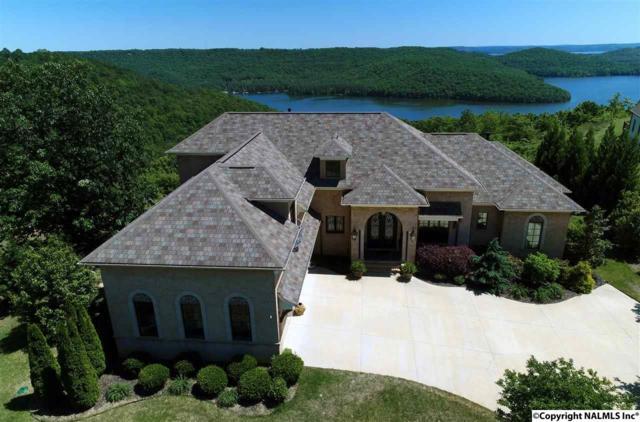 395 Joeffie Road, Grant, AL 35747 (MLS #1068183) :: Amanda Howard Real Estate™