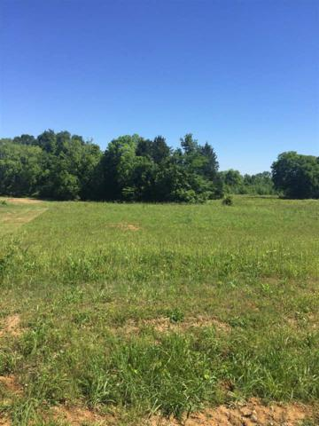 Lot 5 Mountain Home Road, Trinity, AL 35673 (MLS #1068643) :: RE/MAX Distinctive | Lowrey Team