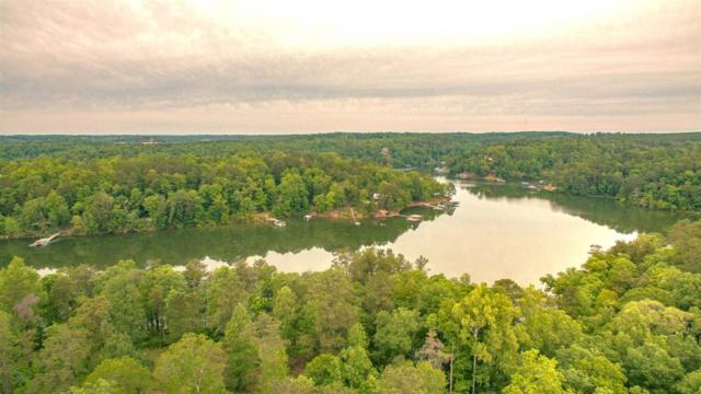 Lot 29 Rock Creek Penninsula, Arley, AL 35540 (MLS #1068666) :: Legend Realty