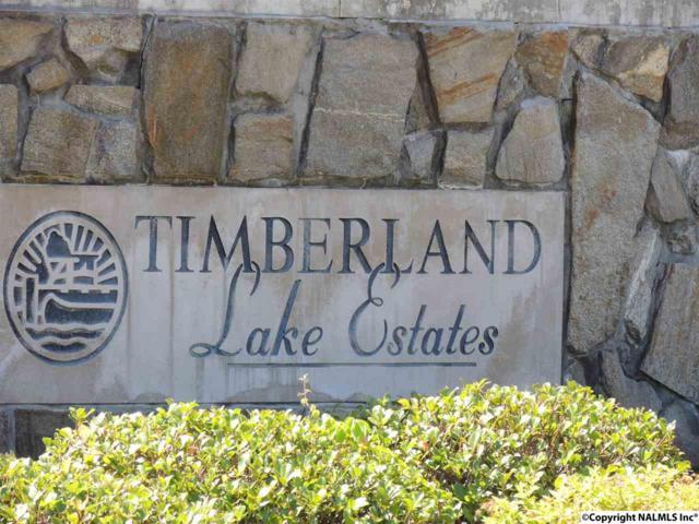 3733 Timberlake Court, Decatur, AL 35603 (MLS #1069051) :: Amanda Howard Real Estate™