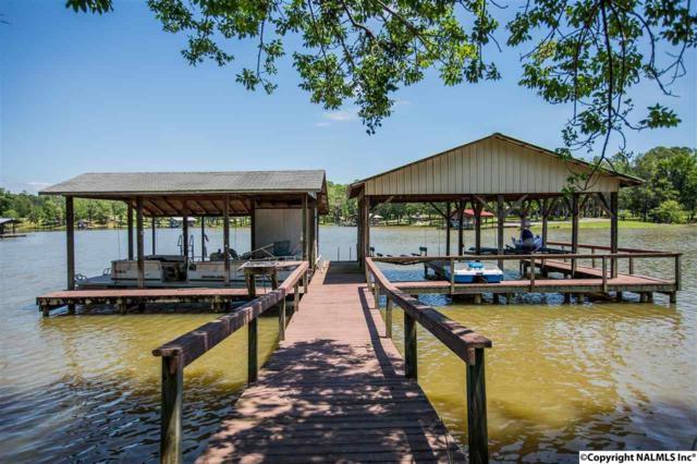 250 County Road 602, Cedar Bluff, AL 35959 (MLS #1069335) :: Amanda Howard Real Estate™