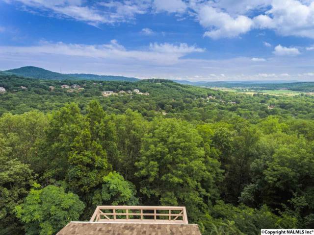 1316 Chandler Road, Huntsville, AL 35801 (MLS #1072061) :: Amanda Howard Real Estate