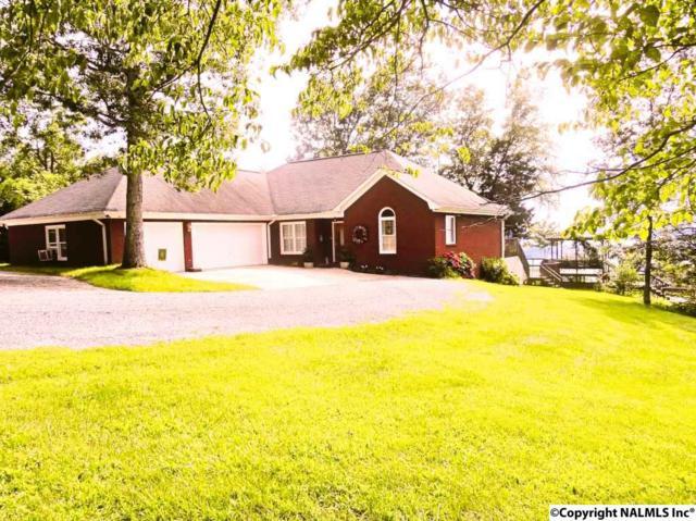 6096 County Road 44, Section, AL 35771 (MLS #1072404) :: Amanda Howard Real Estate
