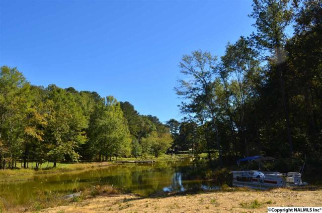 Mccarver Drive, Gadsden, AL 35901 (MLS #1072985) :: RE/MAX Alliance