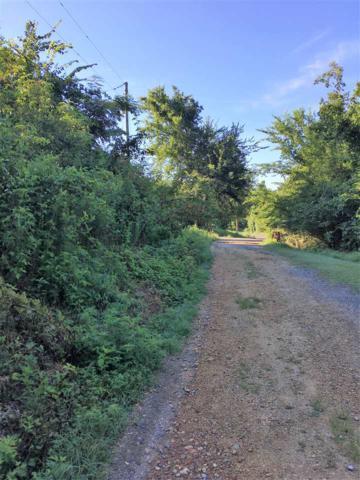 0 Earl Caldwell Drive, Guntersville, AL 35976 (MLS #1075309) :: Amanda Howard Sotheby's International Realty