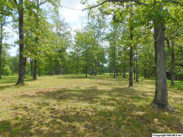 Lot 30 County Road 597, Cedar Bluff, AL 35959 (MLS #1076201) :: RE/MAX Distinctive | Lowrey Team