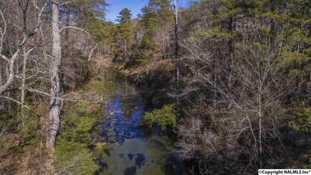 River Road, Mentone, AL 35984 (MLS #1076286) :: RE/MAX Alliance