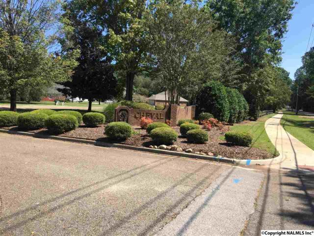 109 Cheval Blvd, Brownsboro, AL 35758 (MLS #1077366) :: RE/MAX Distinctive | Lowrey Team