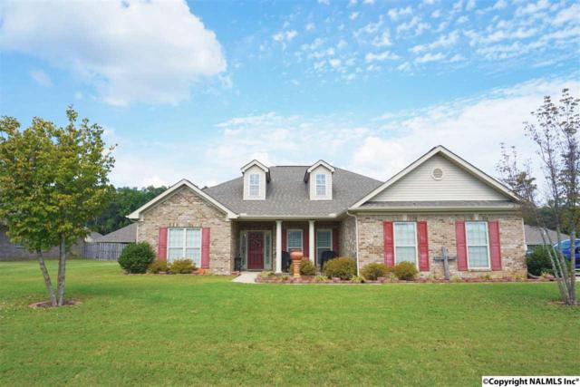 102 Morey Drive, Meridianville, AL 35759 (MLS #1077716) :: Amanda Howard Real Estate™