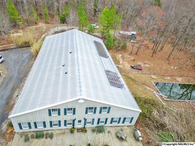 562 Still Meadow Road, Somerville, AL 35670 (MLS #1078429) :: Amanda Howard Real Estate™