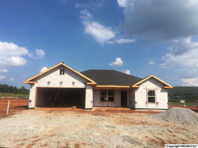 131 White Rock Drive, Harvest, AL 35749 (MLS #1078503) :: Capstone Realty