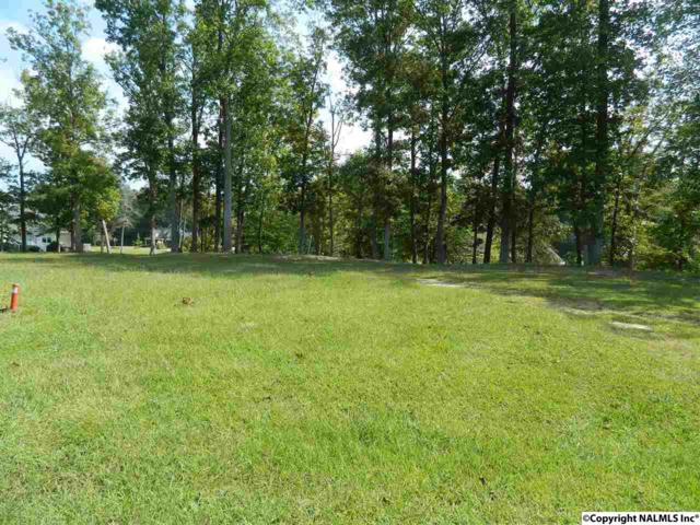 Lot3 River Run Road, Southside, AL 35907 (MLS #1078935) :: RE/MAX Alliance