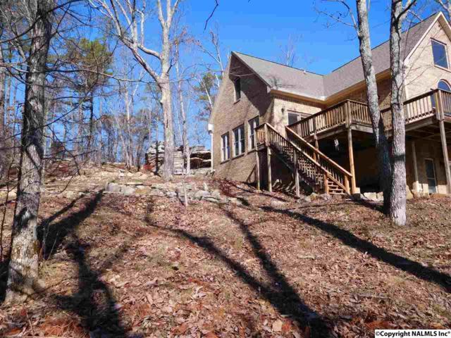 4350 A County Road 70, Leesburg, AL 35983 (MLS #1080265) :: Amanda Howard Real Estate™