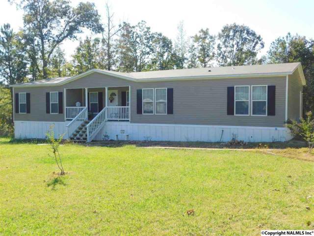 4900 Deer Run Lane, Cedar Bluff, AL 35959 (MLS #1080267) :: Amanda Howard Real Estate™