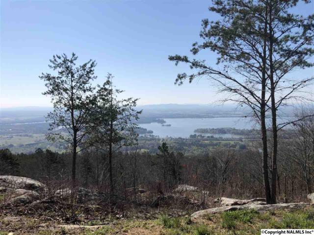 LOT 6 County Road 70, Leesburg, AL 35983 (MLS #1080322) :: Capstone Realty