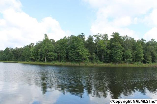 Lot 43 County Road 103, Mentone, AL 35984 (MLS #1080381) :: Amanda Howard Real Estate™