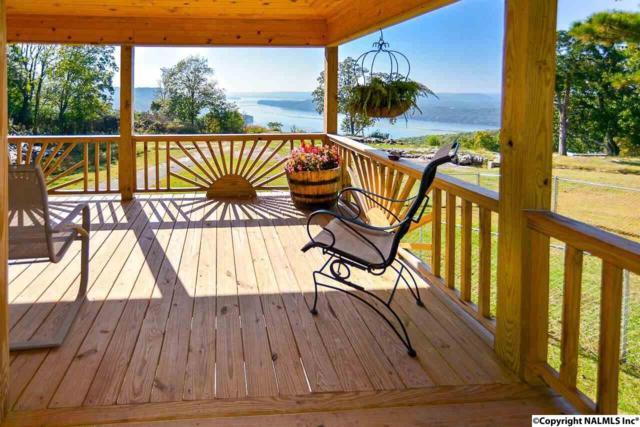 5859 Tammy Little Drive, Section, AL 35771 (MLS #1080466) :: Amanda Howard Real Estate™